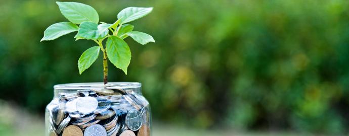 Funding Opportunities header